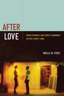Noelle Stout's book cover After Love.